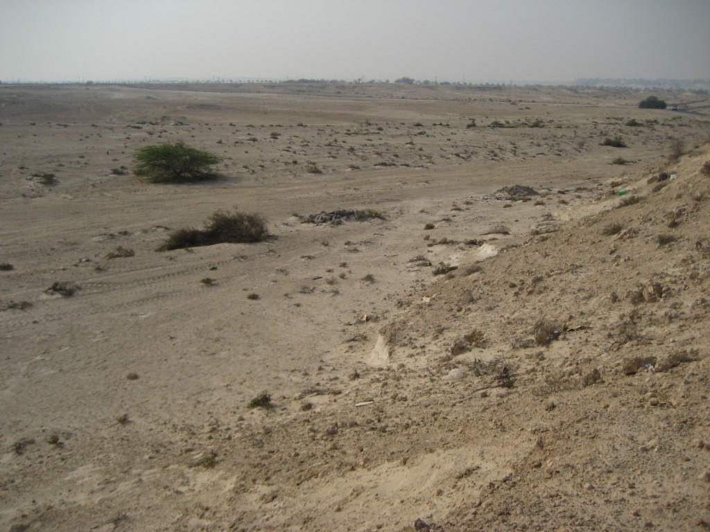 Figure 3: From atop a high bluff looking out over the Bahraini desert in July 2006.