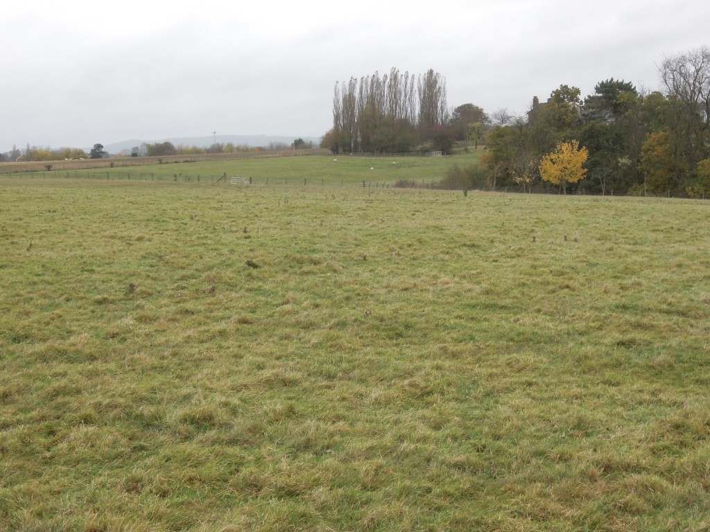 Figure 7: November 2012 and the view down the future 16th hole at JCB Woodseat Hall.